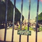 Tame Impala : Lonerism (CD)