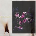 Gazoline : Brûlensemble (LP)