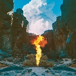 Bonobo : Migration (LP)