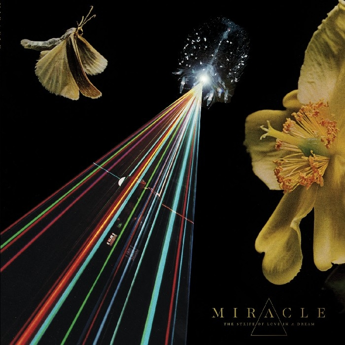 Miracle : The Strife Of Love In A Dream (CD)