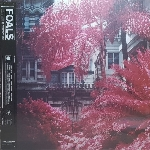 Foals : Everything Not Saved Will Be Lost, Part 1 (LP)