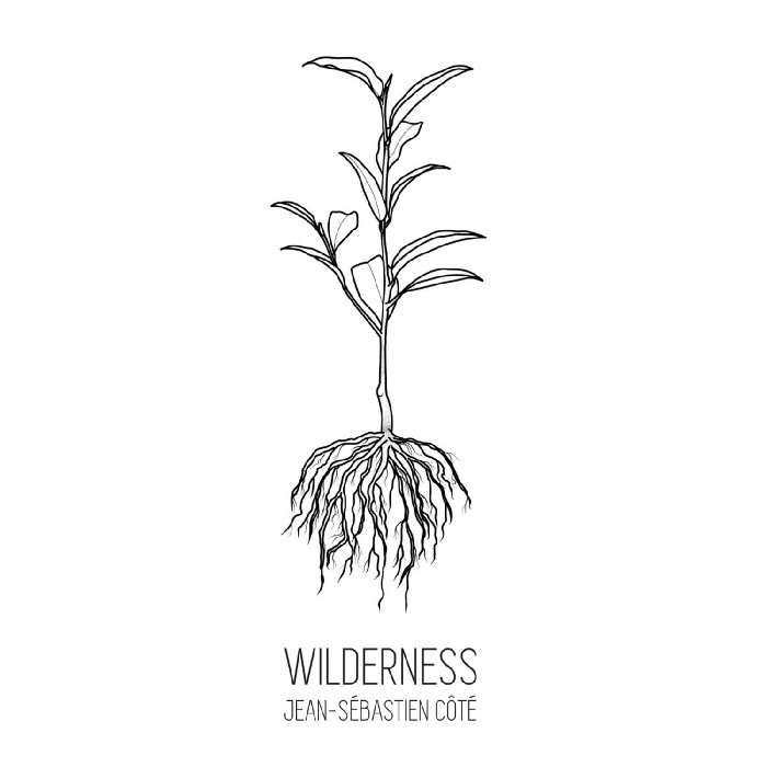 Côté, Jean-Sébastien : Wilderness (CD)