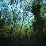 Worriedaboutsatan : Time Lapse (CD)